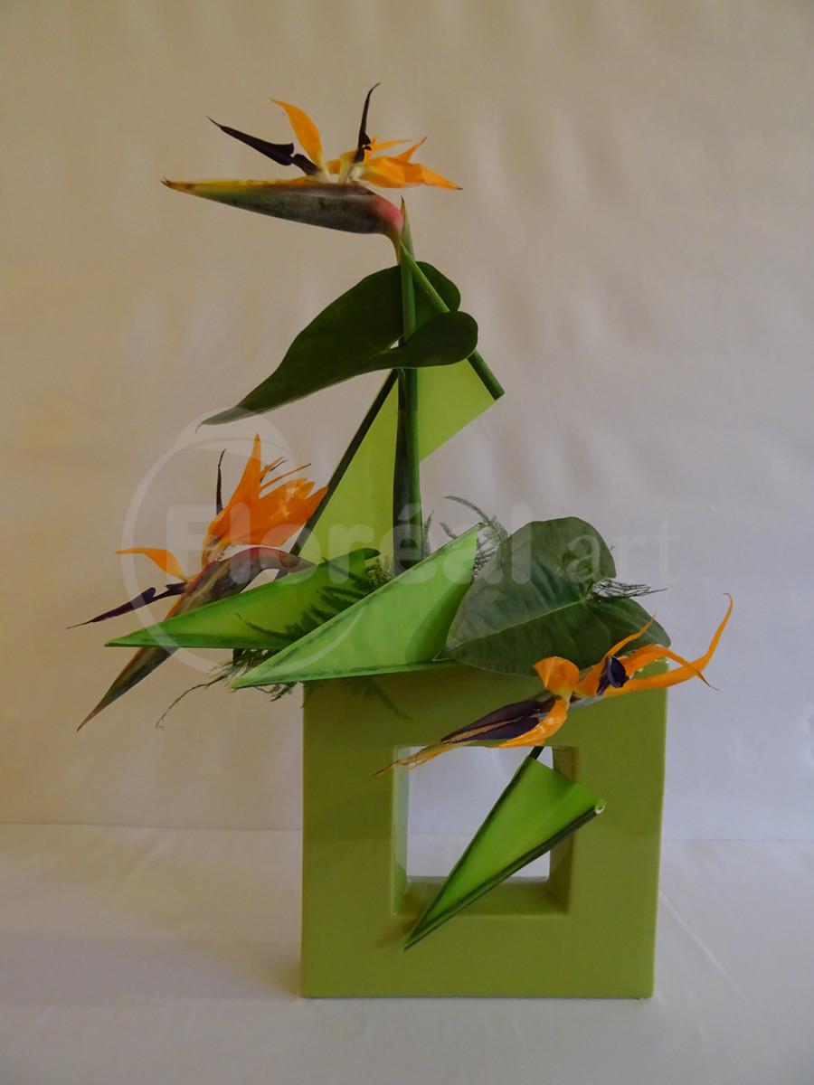 Yves - oiseaux en piqués
