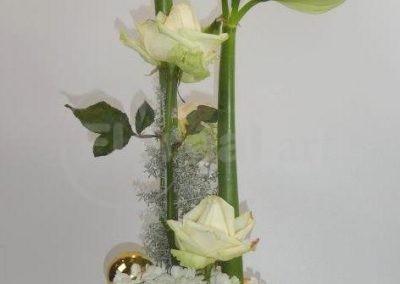 Martine Amaryllis 2019 Noël